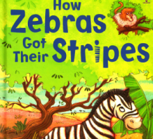 斑马的斑纹 How Zebras Got Their Stripes